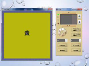 окно черепахи и пульт Оно содержит желтое поле (арену, посыпанную песком), ок