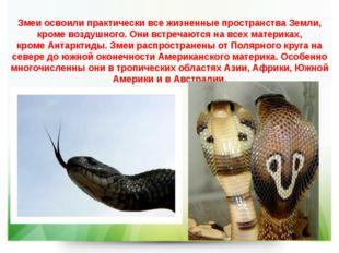 Змеи освоили практически все жизненные пространства Земли, кроме воздушного.