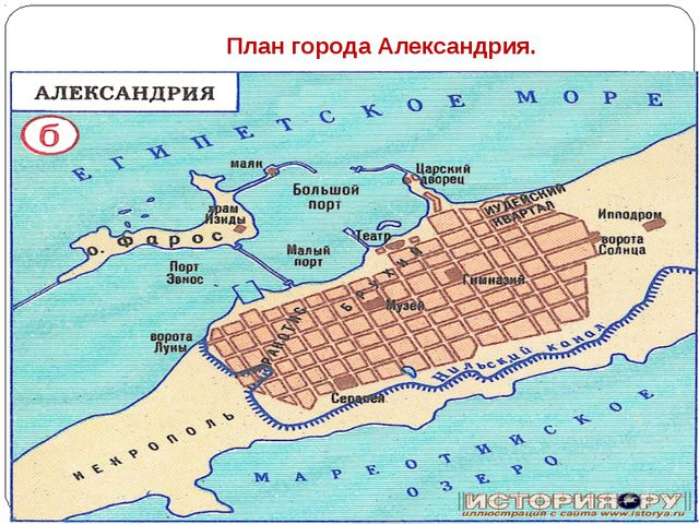 План города Александрия.