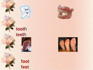 tooth teeth foot feet