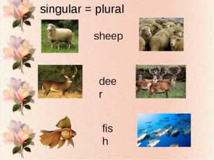 singular = plural sheep deer fish