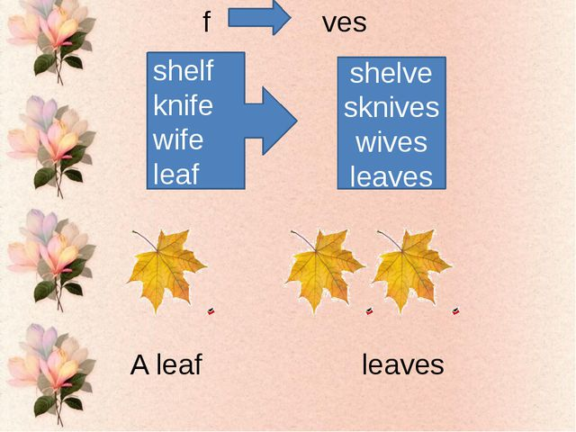shelf knife wife leaf shelvesknives wives leaves f ves A leaf leaves