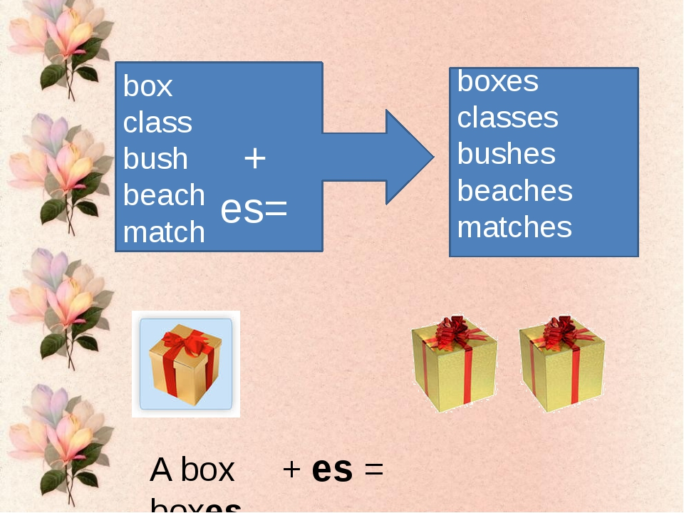 box class bush beach match + es= boxes classes bushes beaches matches A box +...