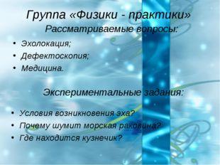 Группа «Физики - практики» Рассматриваемые вопросы: Эхолокация; Дефектоскопия