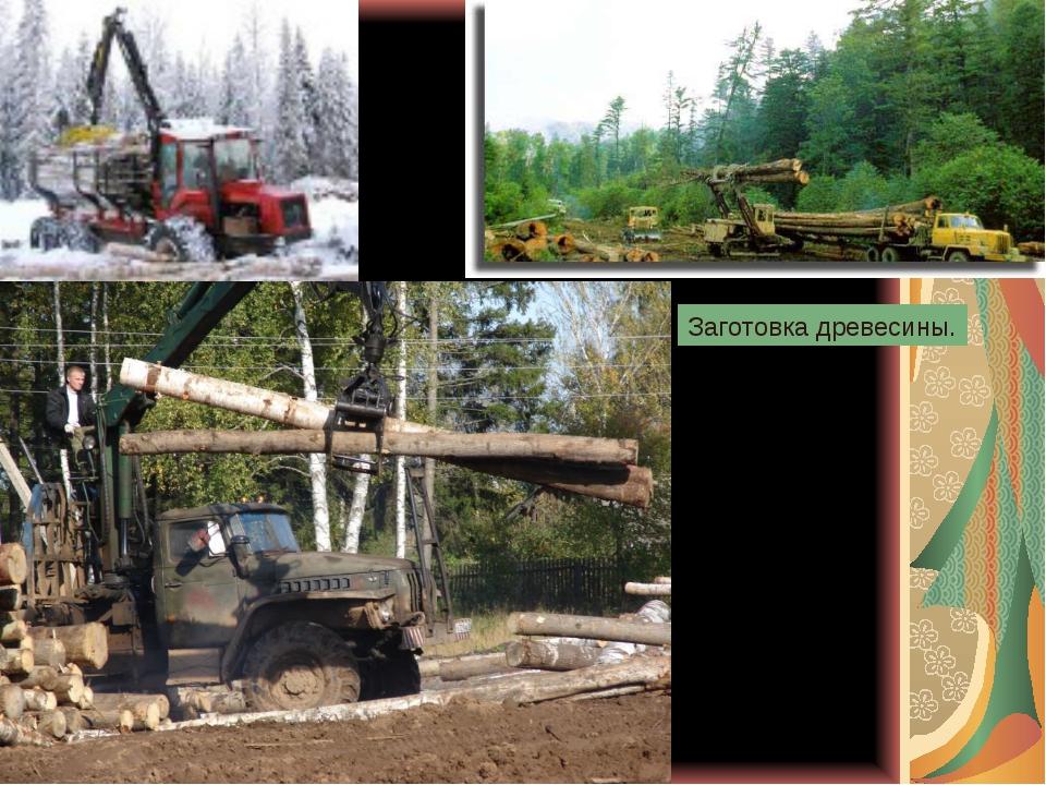 Заготовка древесины.