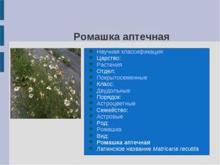 Ромашка аптечная Научная классификация Царство: Растения Отдел: Покрытосемен