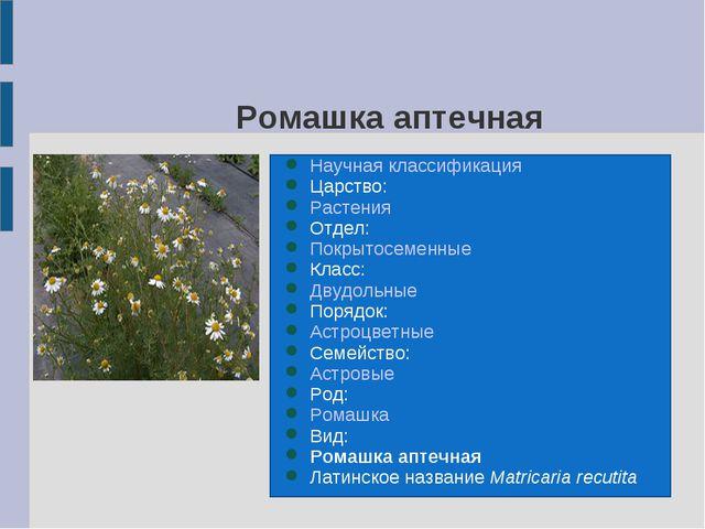 Ромашка аптечная Научная классификация Царство: Растения Отдел: Покрытосемен...