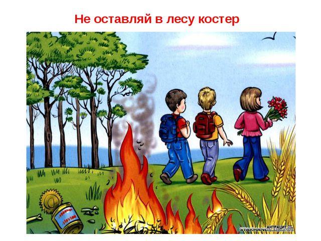 Не оставляй в лесу костер