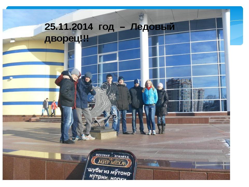 25.11.2014 год – Ледовый дворец!!!