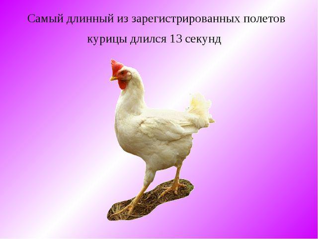 Самый длинный из зарегистрированных полетов курицы длился 13 секунд