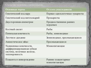 Сходство человека с животными. Основные черты От кого унаследовали Генетическ
