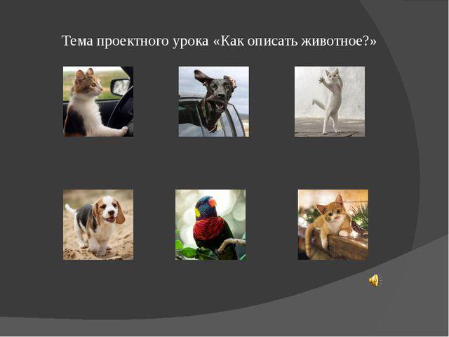 Тема проектного урока «Как описать животное?»