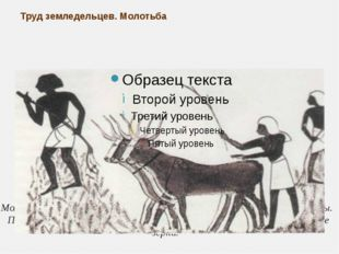 Труд земледельцев. Молотьба Молотьба происходила на выровненной площадке, куд