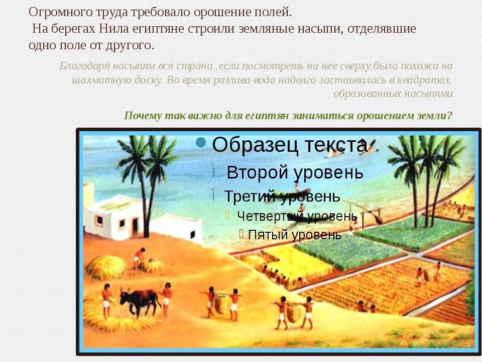 Огромного труда требовало орошение полей. На берегах Нила египтяне строили зе...