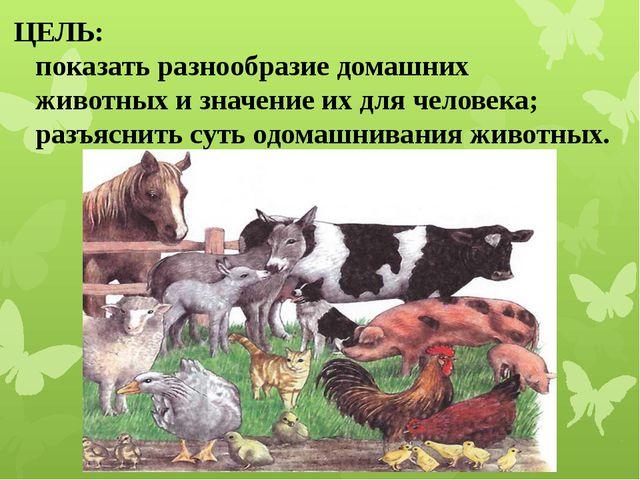 ЦЕЛЬ: показать разнообразие домашних животных и значение их для человека; раз...