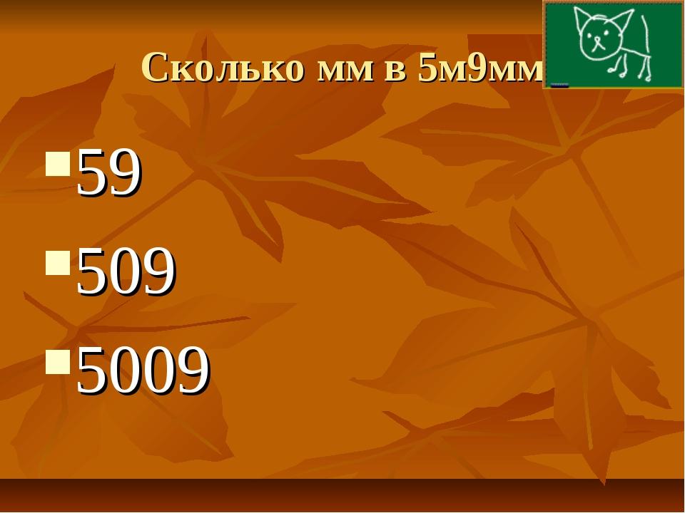 Сколько мм в 5м9мм 59 509 5009