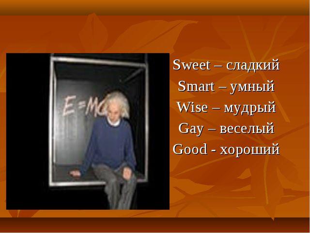 Sweet – сладкий Smart – умный Wise – мудрый Gay – веселый Good - хороший