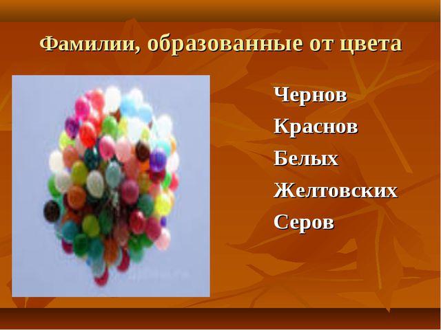 Фамилии, образованные от цвета Чернов Краснов Белых Желтовских Серов