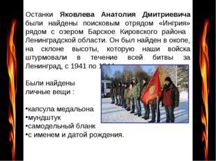 Останки Яковлева Анатолия Дмитриевича были найдены поисковым отрядом «Ингрия