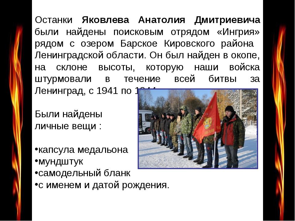 Останки Яковлева Анатолия Дмитриевича были найдены поисковым отрядом «Ингрия...