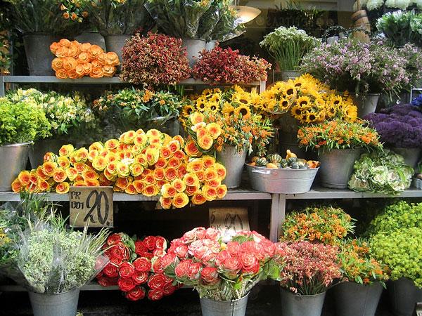 Бизнес идея: организовываем цветочный бизнес Бизнес идеи для…