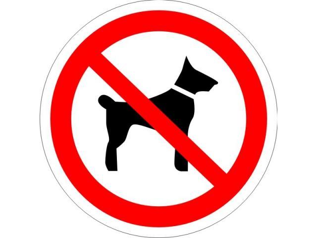 Виниловая наклейка Вход с собаками запрещен в интернет-магазине 2stick.ru