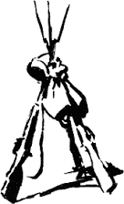 Картинки по запросу картинки гармонь теркина