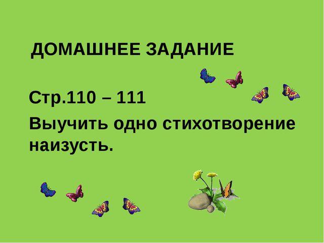 ДОМАШНЕЕ ЗАДАНИЕ Стр.110 – 111 Выучить одно стихотворение наизусть.