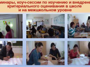 Семинары, коуч-сессии по изучению и внедрению критериального оценивания в шко