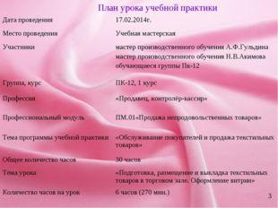 * 3 План урока учебной практики Дата проведения17.02.2014г. Место проведения