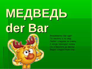 МЕДВЕДЬ der Bar Вперевалку Bar идет По малину и по мед Любит сладкое он очень