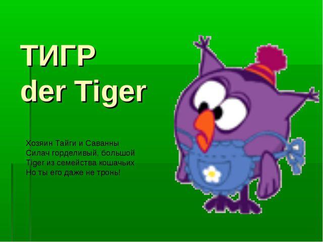 ТИГР der Tiger Хозяин Тайги и Саванны Силач горделивый, большой Tiger из семе...