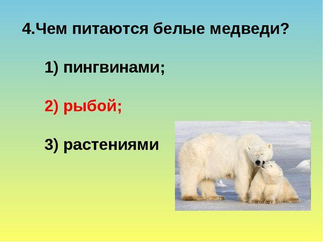 Чем питаются белые медведи? 1) пингвинами; 2) рыбой; 3) растениями