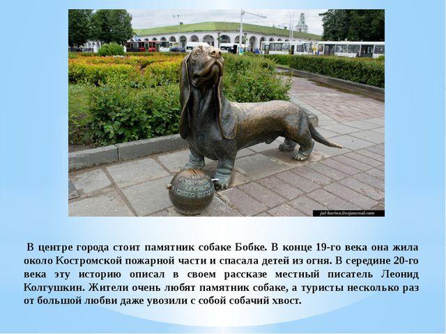 В центре города стоит памятник собаке Бобке. В конце 19-го века она жила око...