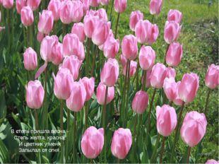 В степь пришла весна - Степь желта, красна, И цветник у меня Запылал от огня.
