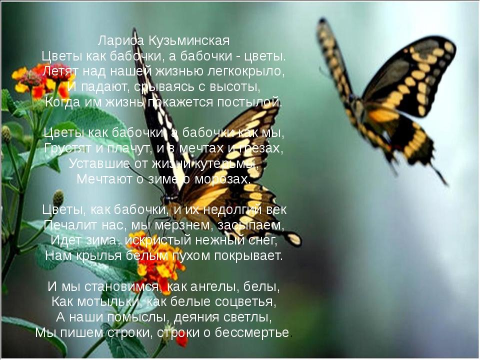 Лариса Кузьминская Цветы как бабочки, а бабочки - цветы. Летят над нашей жи...