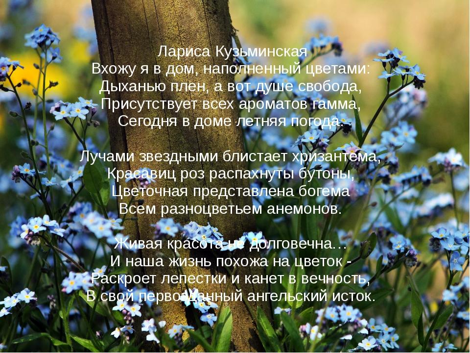 Лариса Кузьминская Вхожу я в дом, наполненный цветами: Дыханью плен, а вот д...