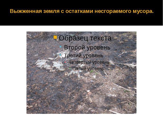 Выжженная земля с остатками несгораемого мусора.