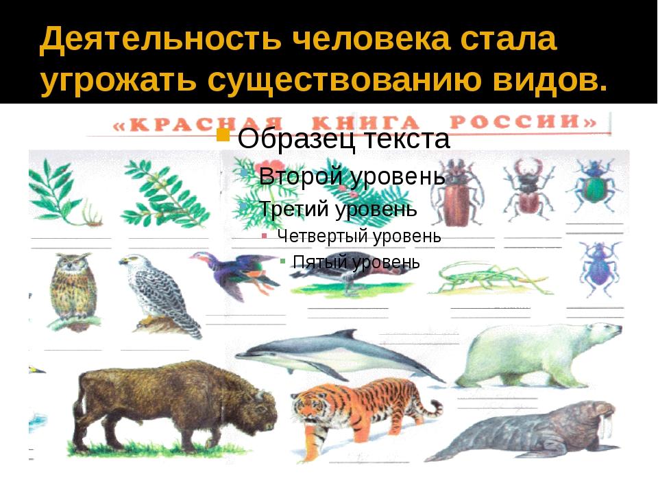 Деятельность человека стала угрожать существованию видов.