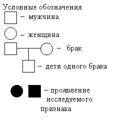 C:\Users\User\Desktop\img371017n1.bmp