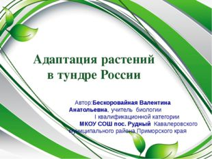 Адаптация растений в тундре России Автор:Бескоровайная Валентина Анатольевна,