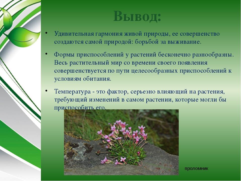 Вывод: Удивительная гармония живой природы, ее совершенство создаются самой п...
