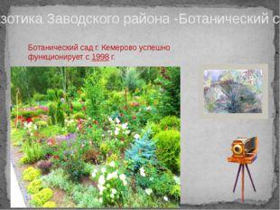 Экзотика Заводского района -Ботанический сад Ботанический сад г. Кемерово усп