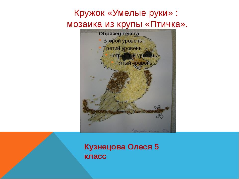 Кружок «Умелые руки» : мозаика из крупы «Птичка». Кузнецова Олеся 5 класс