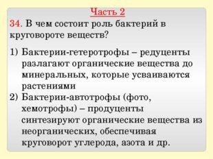 Часть 2 34. В чем состоит роль бактерий в круговороте веществ? Бактерии-гетер