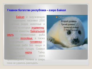 Главное богатство республики – озеро Байкал Озеро Байкал и окружающую его те