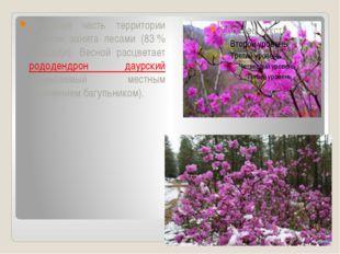 Бо́льшая часть территории Бурятии занята лесами (83% площади). Весной расцв