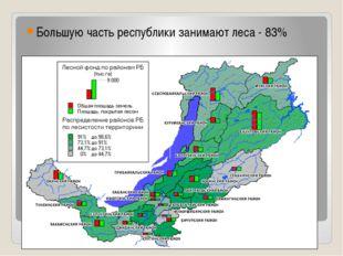 Большую часть республики занимают леса - 83%