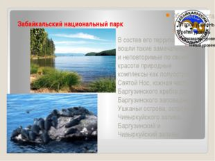 Забайкальский национальный парк В состав его территории вошли такие замечате