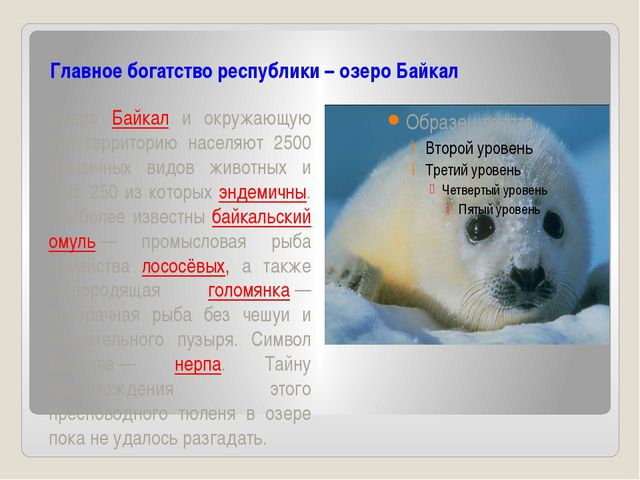 Главное богатство республики – озеро Байкал Озеро Байкал и окружающую его те...